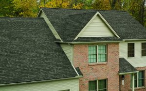True Def Duration Asphalt Shingles
