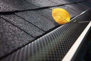 Leaf Guard Gutter System